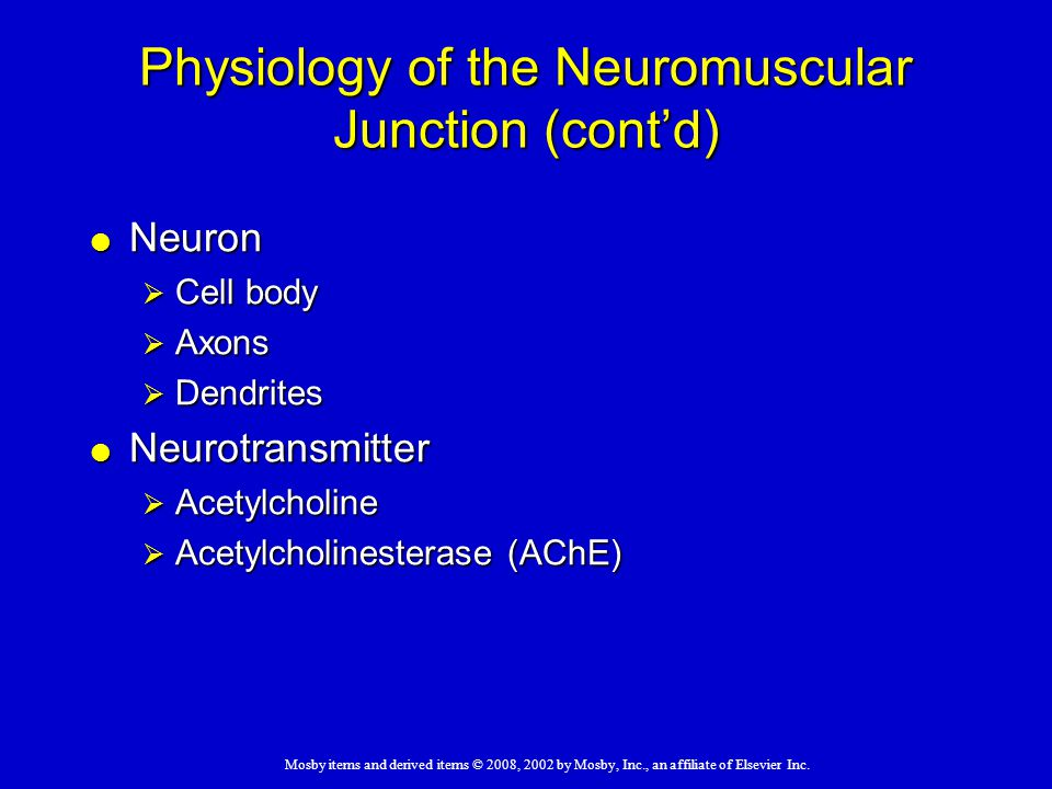 Physiology of the Neuromuscular Junction (cont'd)
