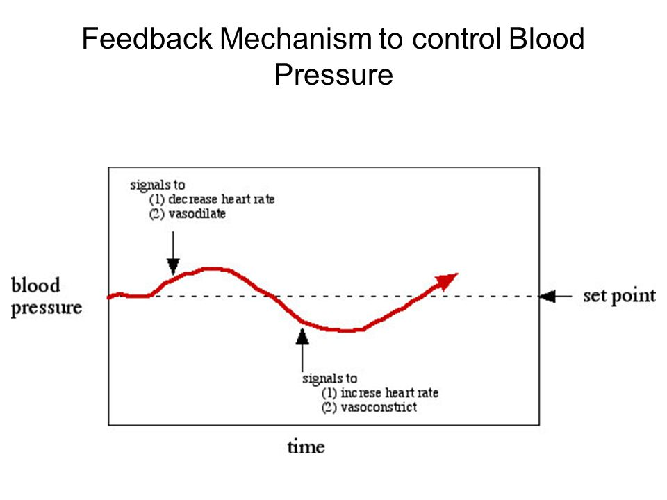 Feedback Mechanism to control Blood Pressure