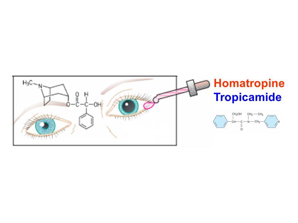 Homatropine Tropicamide