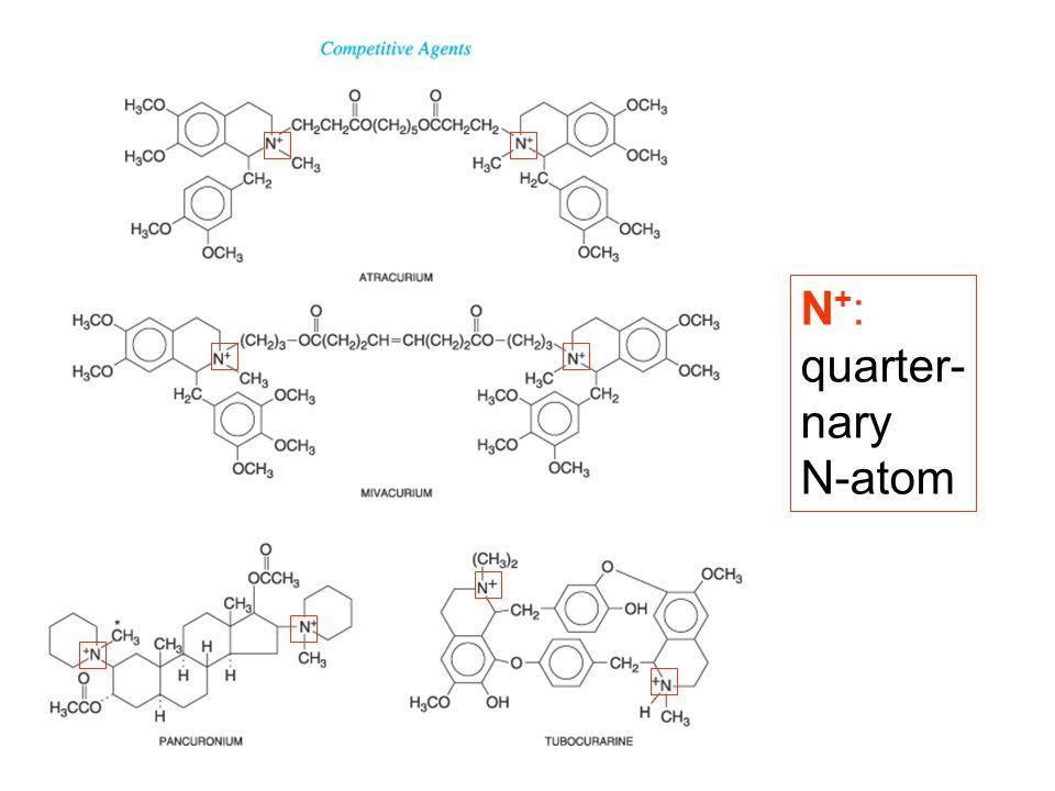 N+: quarter- nary N-atom