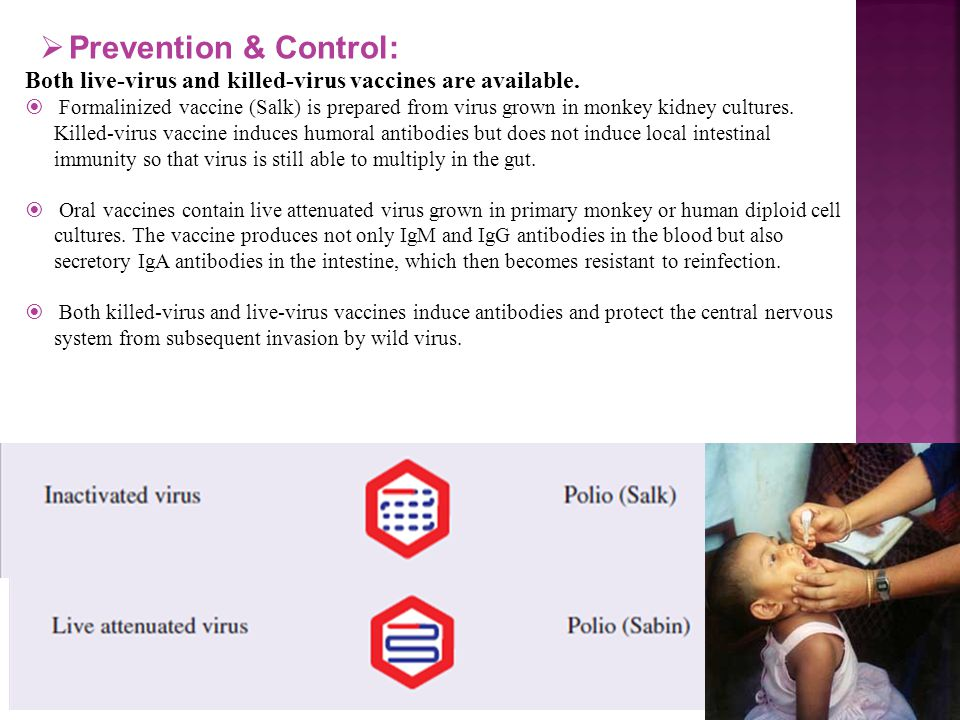 Prevention & Control: Both live-virus and killed-virus vaccines are available.