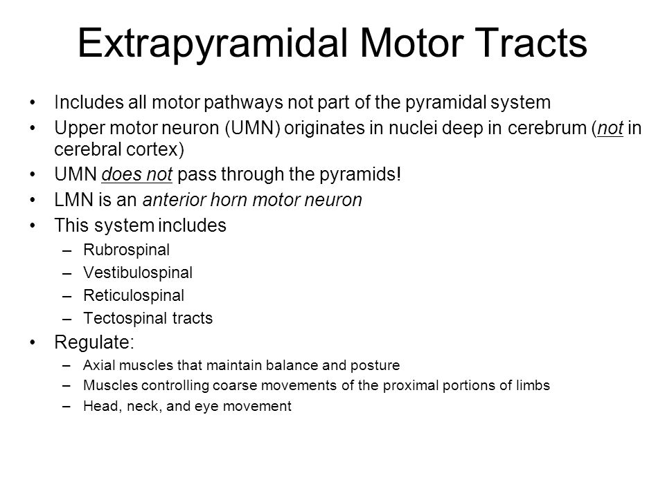 Extrapyramidal Motor Tracts