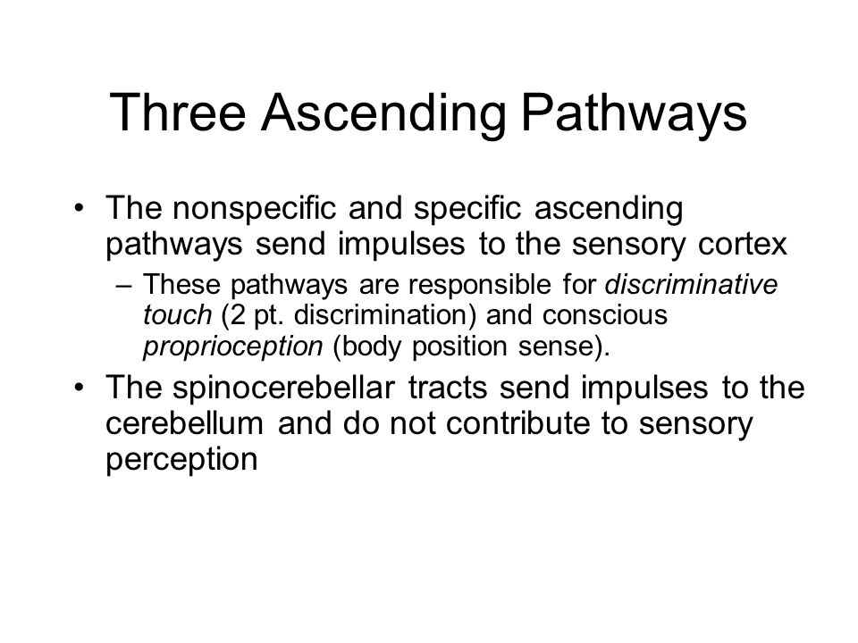 Three Ascending Pathways