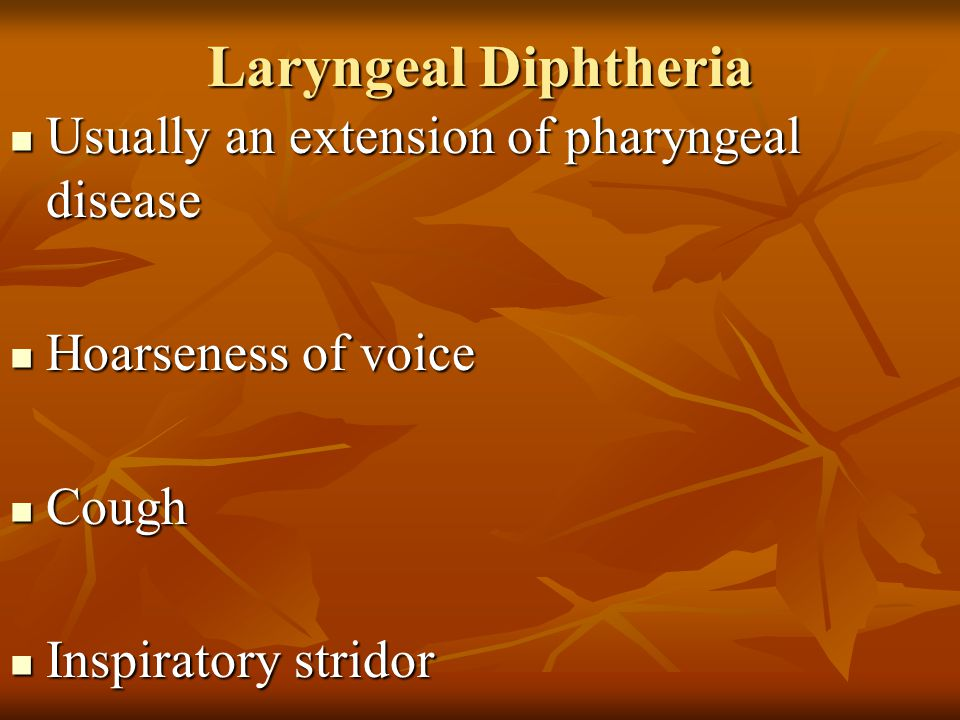 Laryngeal Diphtheria Usually an extension of pharyngeal disease