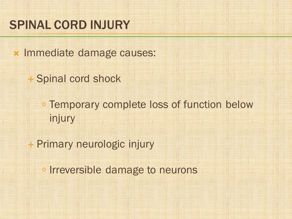 Spinal Cord Injury Immediate damage causes: Spinal cord shock