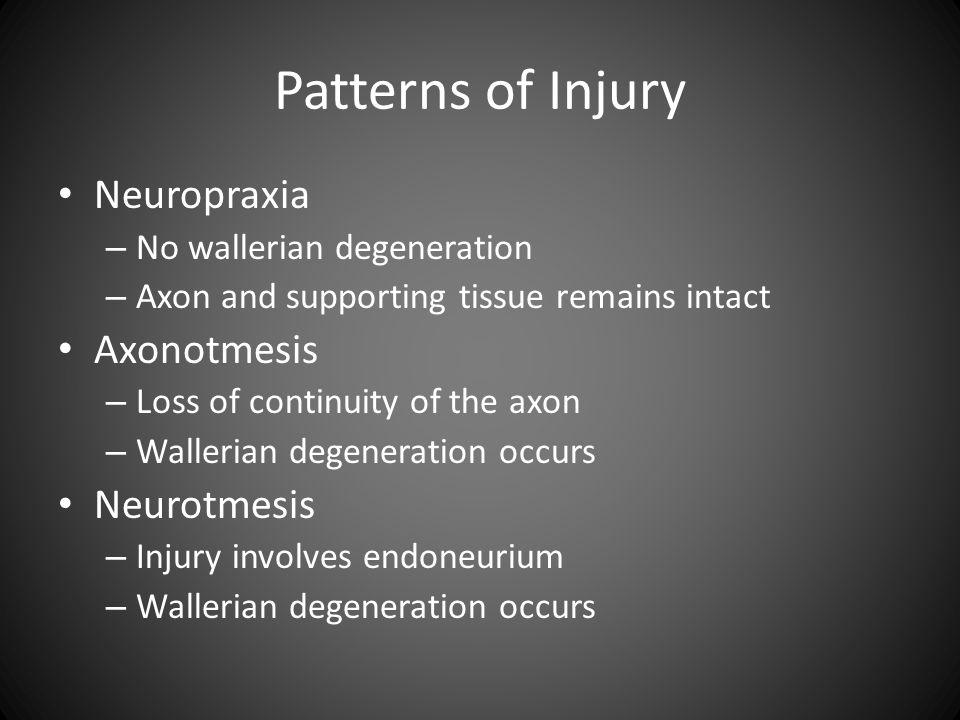 Patterns of Injury Neuropraxia Axonotmesis Neurotmesis