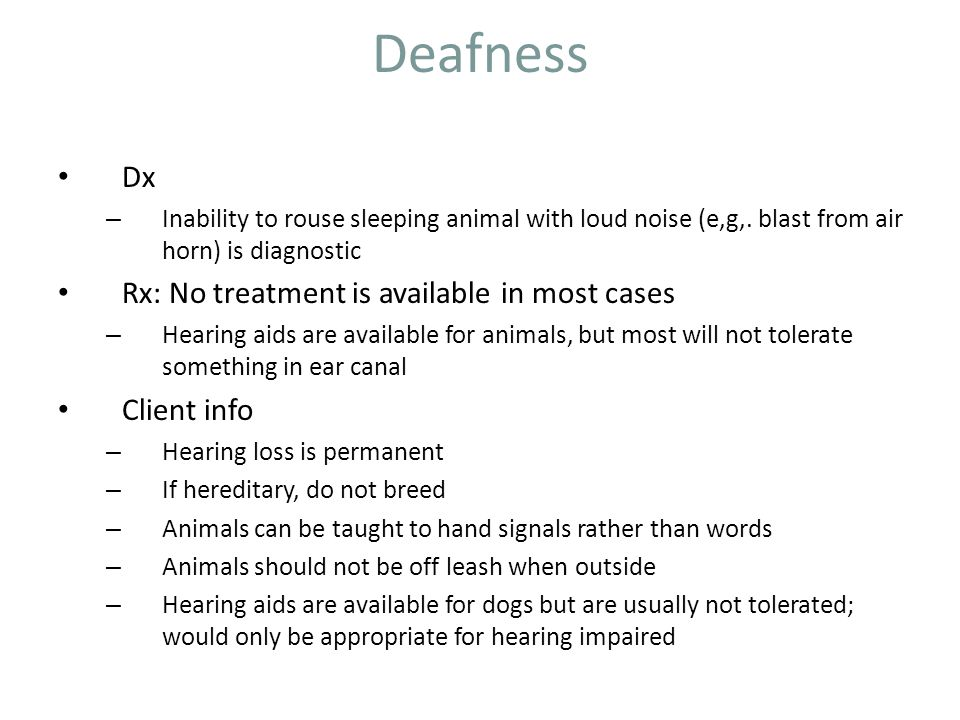 Deafness Dx Rx: No treatment is available in most cases Client info