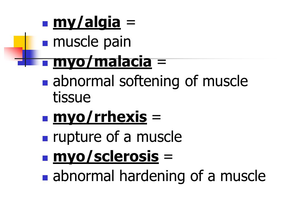 my/algia = muscle pain. myo/malacia = abnormal softening of muscle tissue. myo/rrhexis = rupture of a muscle.