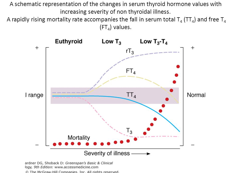 A schematic representation of the changes in serum thyroid hormone values with increasing severity of non thyroidal illness.