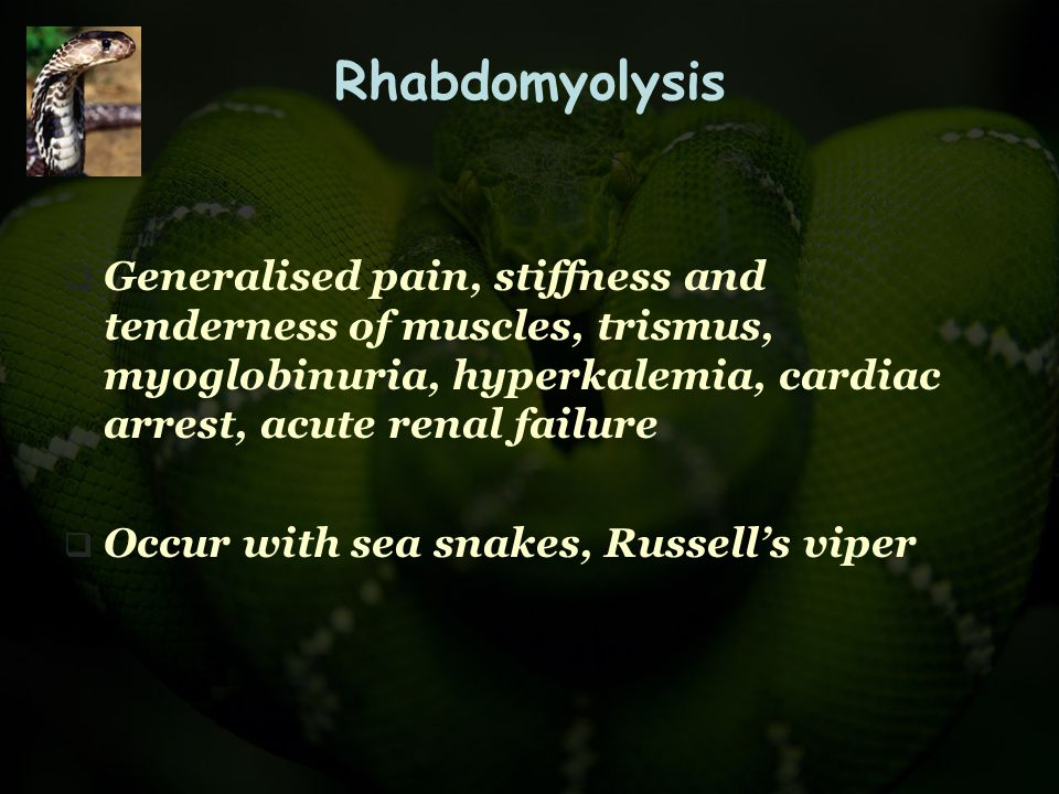 Rhabdomyolysis Generalised pain, stiffness and tenderness of muscles, trismus, myoglobinuria, hyperkalemia, cardiac arrest, acute renal failure.