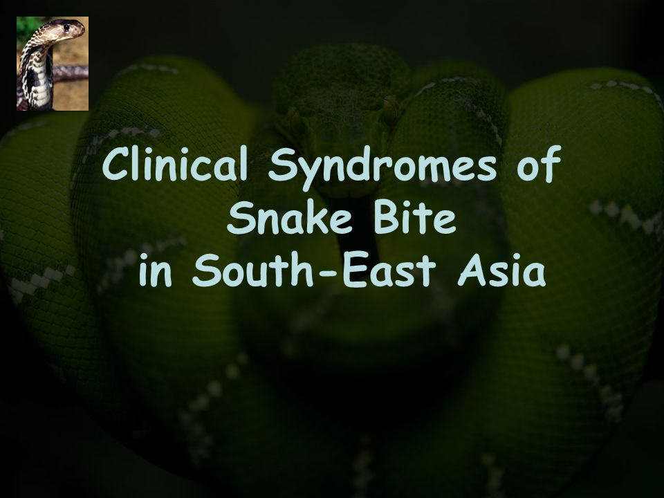 Clinical Syndromes of Snake Bite in South-East Asia