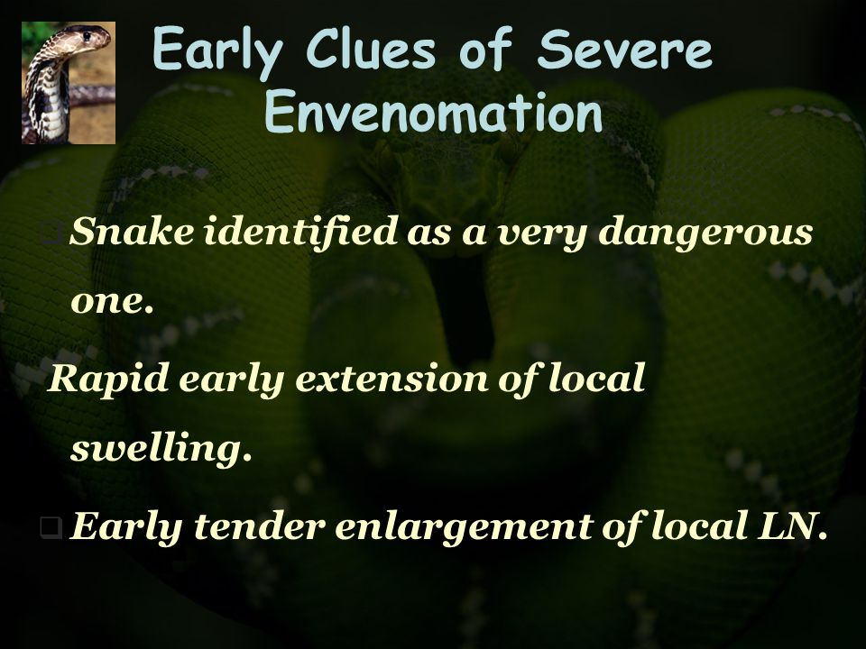 Early Clues of Severe Envenomation