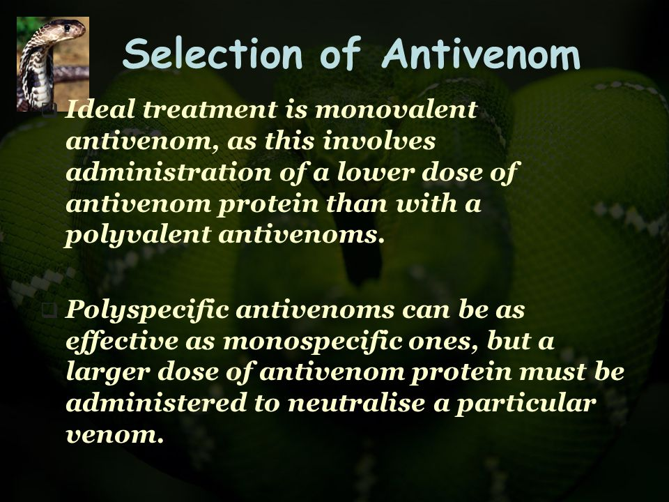 Selection of Antivenom