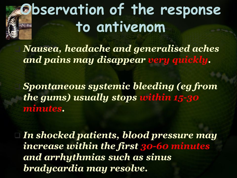 Observation of the response to antivenom