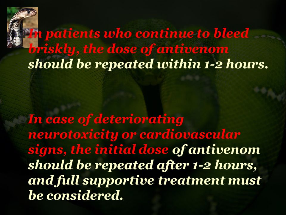 In patients who continue to bleed briskly, the dose of antivenom should be repeated within 1-2 hours.