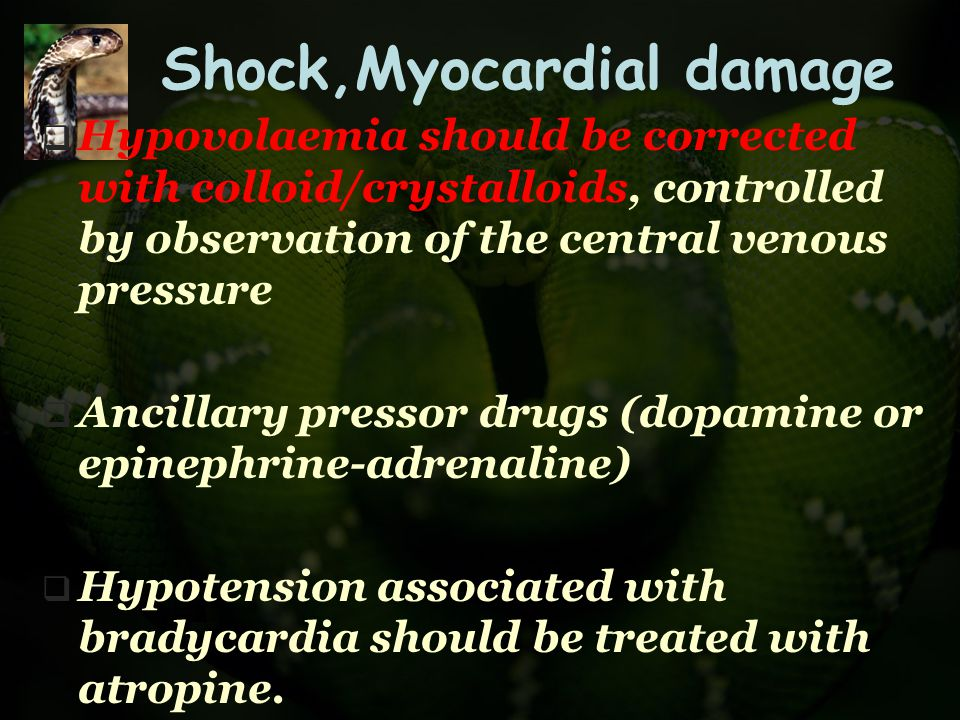 Shock,Myocardial damage