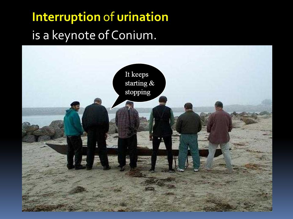 Interruption of urination is a keynote of Conium.
