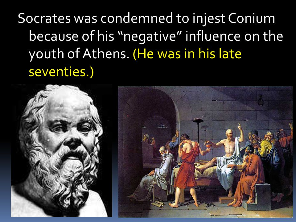 Socrates was condemned to injest Conium because of his negative influence on the youth of Athens.