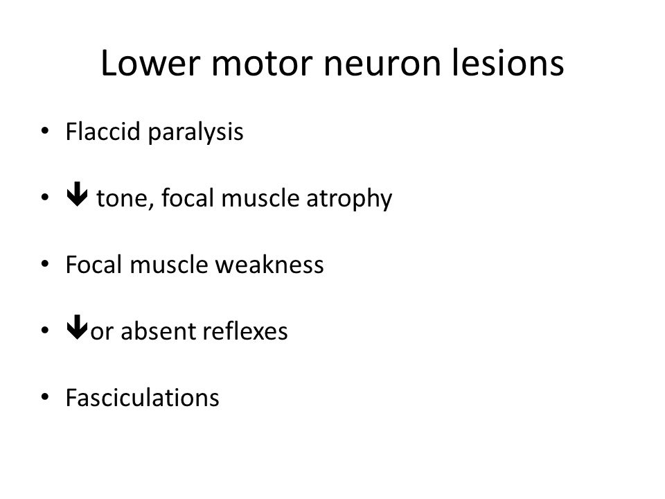 Lower motor neuron lesions