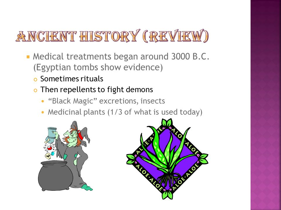 Ancient History (Review)