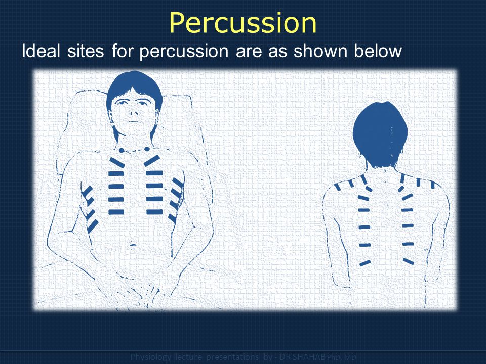 Percussion Ideal sites for percussion are as shown below