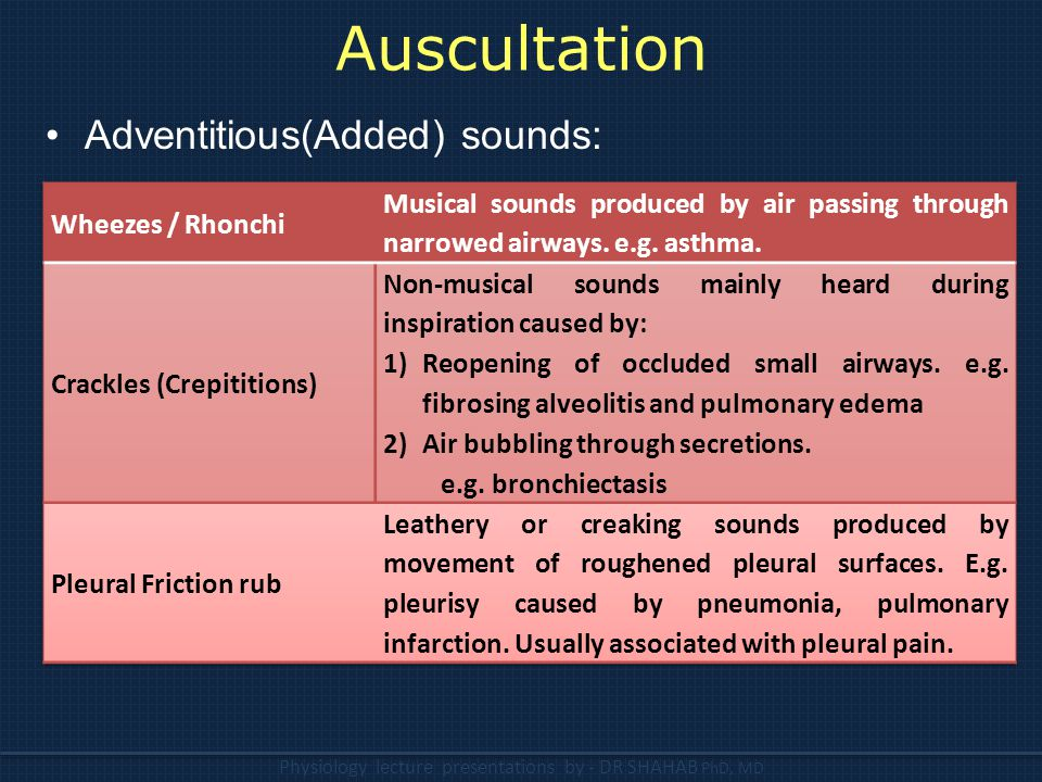 Auscultation Adventitious(Added) sounds: Wheezes / Rhonchi
