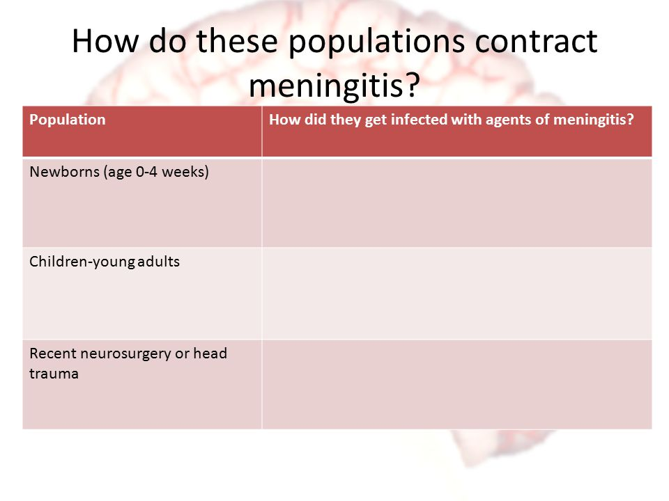 How do these populations contract meningitis