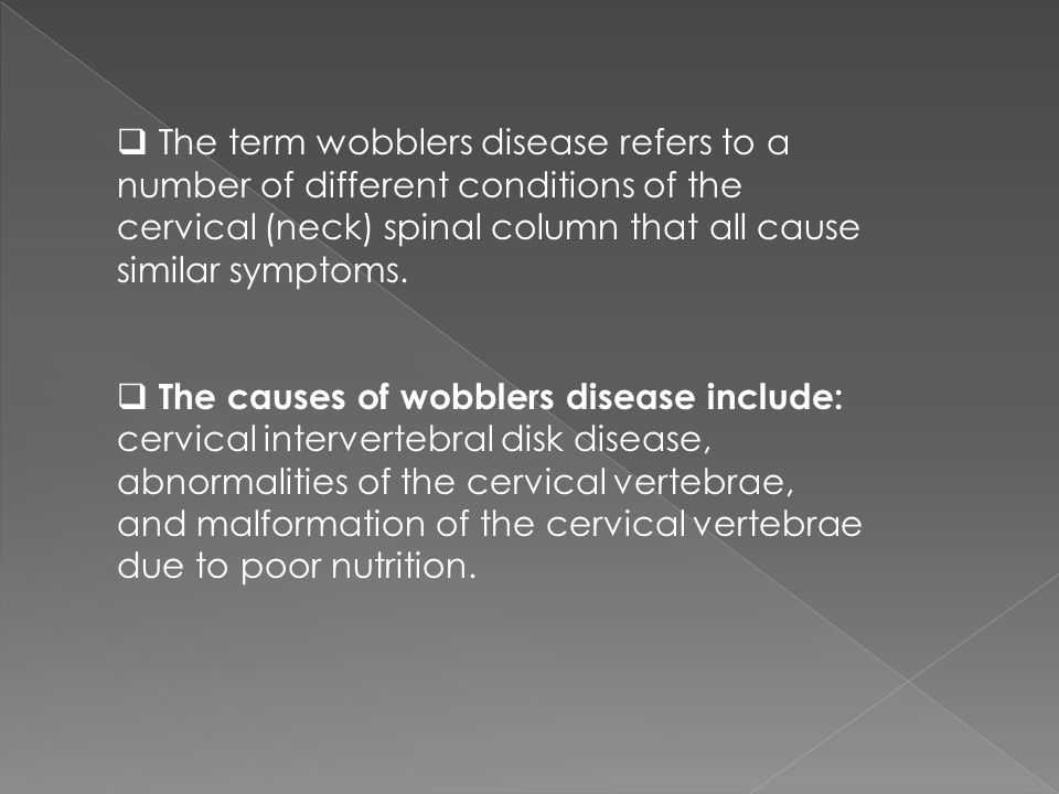 The term wobblers disease refers to a number of different conditions of the cervical (neck) spinal column that all cause similar symptoms.