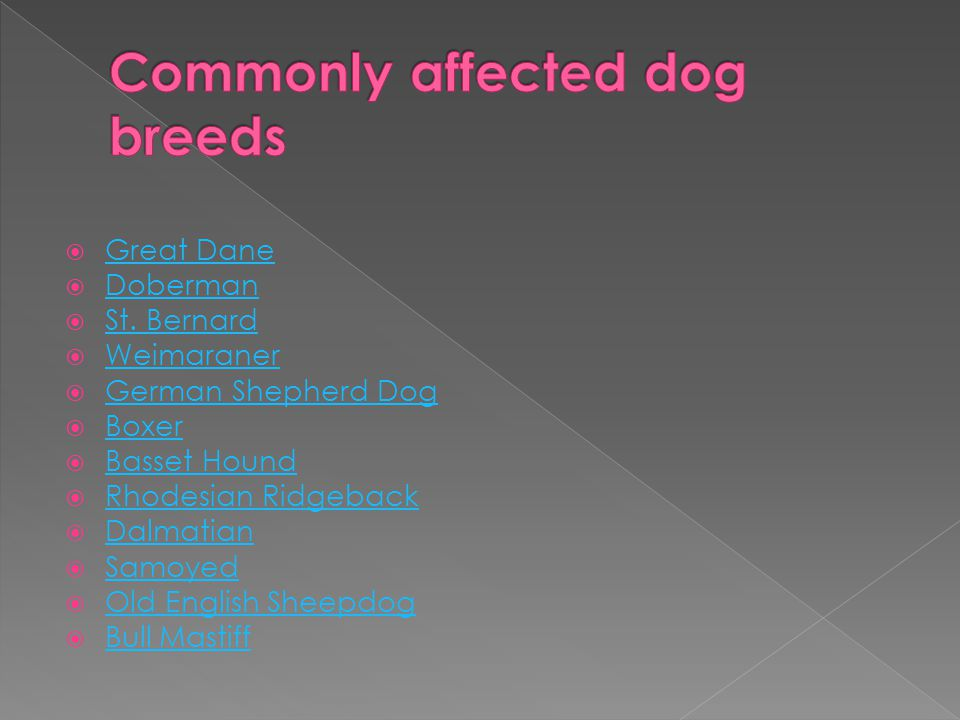 Commonly affected dog breeds