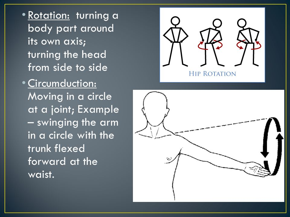 Rotation: turning a body part around its own axis; turning the head from side to side