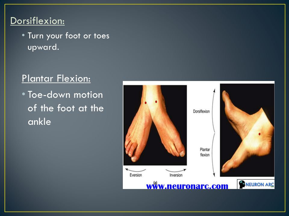 Toe-down motion of the foot at the ankle