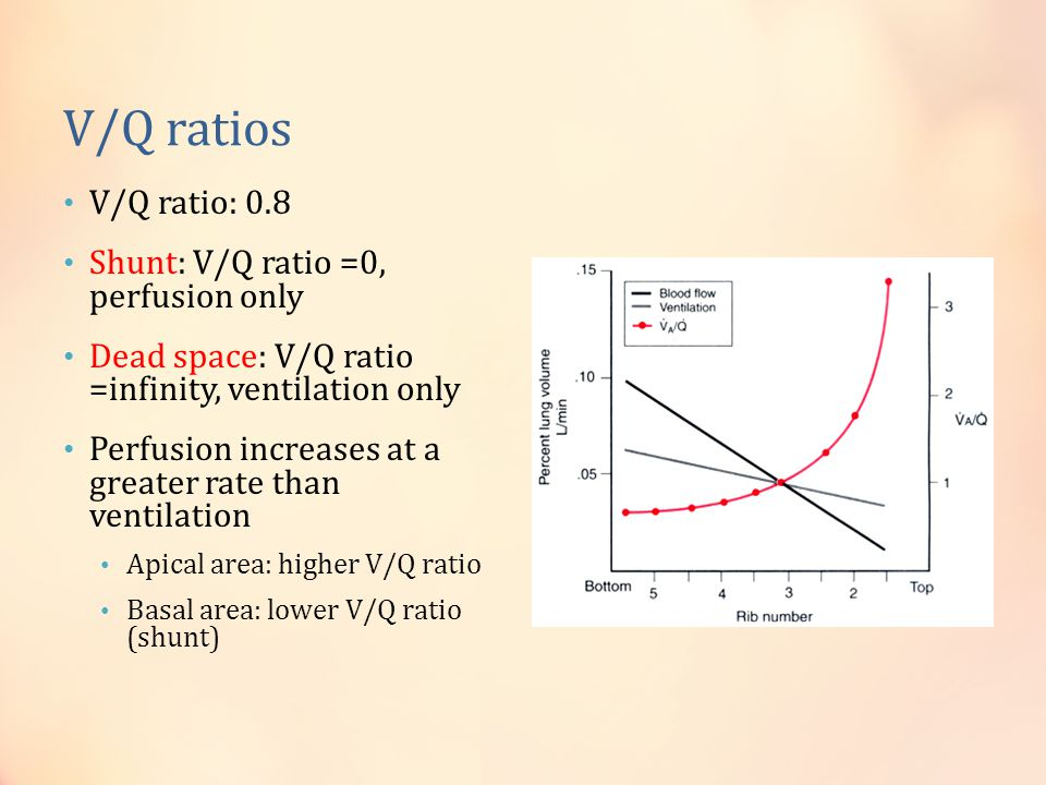 Ventilation Perfusion Ratio : Respiratory physiology during anesthesia ppt video