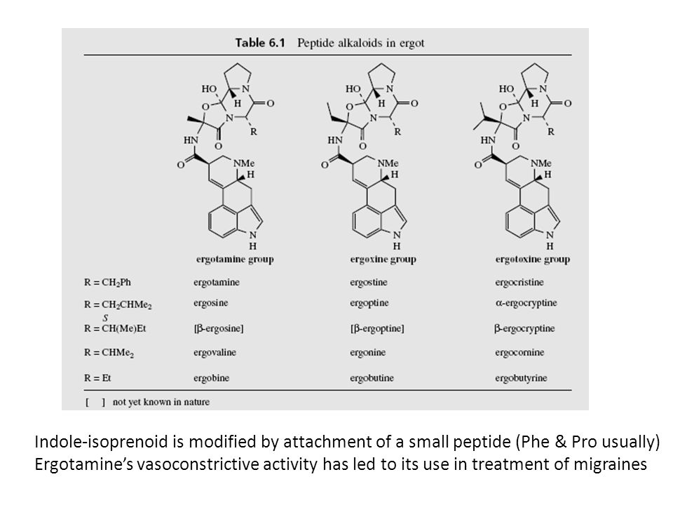 Indole-isoprenoid is modified by attachment of a small peptide (Phe & Pro usually)