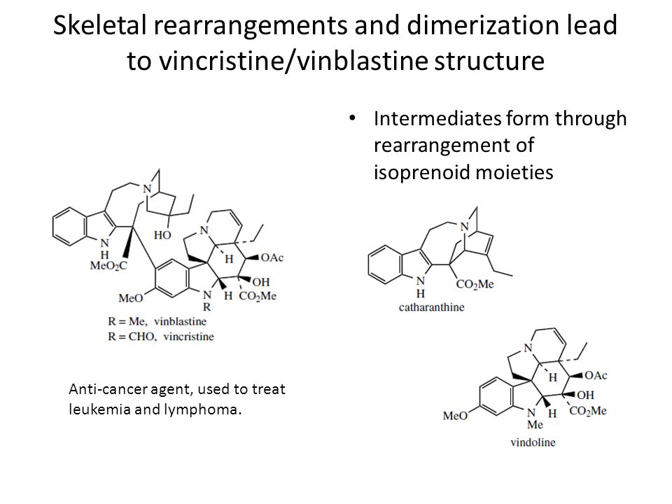 Skeletal rearrangements and dimerization lead to vincristine/vinblastine structure