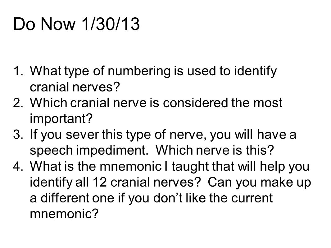 Do Now 1/30/13 What type of numbering is used to identify cranial nerves Which cranial nerve is considered the most important