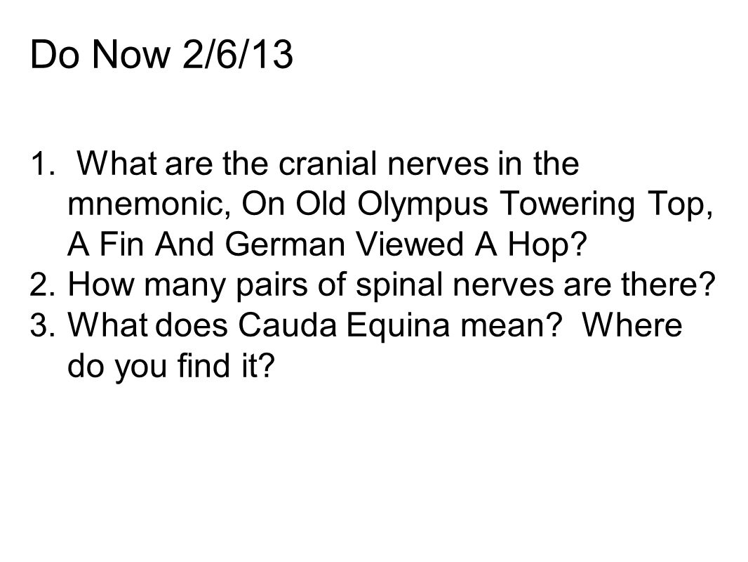 Do Now 2/6/13 What are the cranial nerves in the mnemonic, On Old Olympus Towering Top, A Fin And German Viewed A Hop