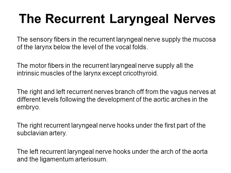 The Recurrent Laryngeal Nerves