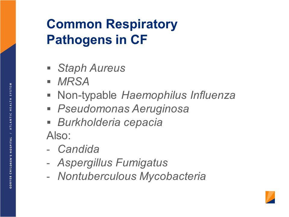 Common Respiratory Pathogens in CF