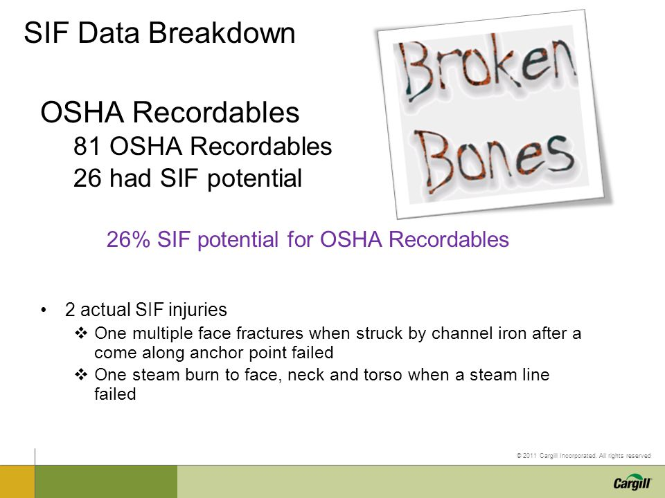 SIF Data Breakdown OSHA Recordables 81 OSHA Recordables