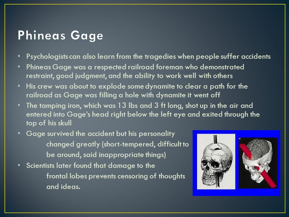 Phineas Gage Psychologists can also learn from the tragedies when people suffer accidents.