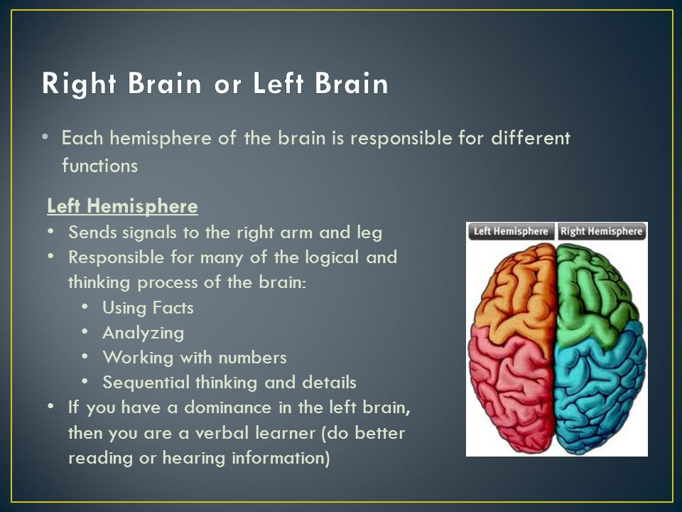 Right Brain or Left Brain