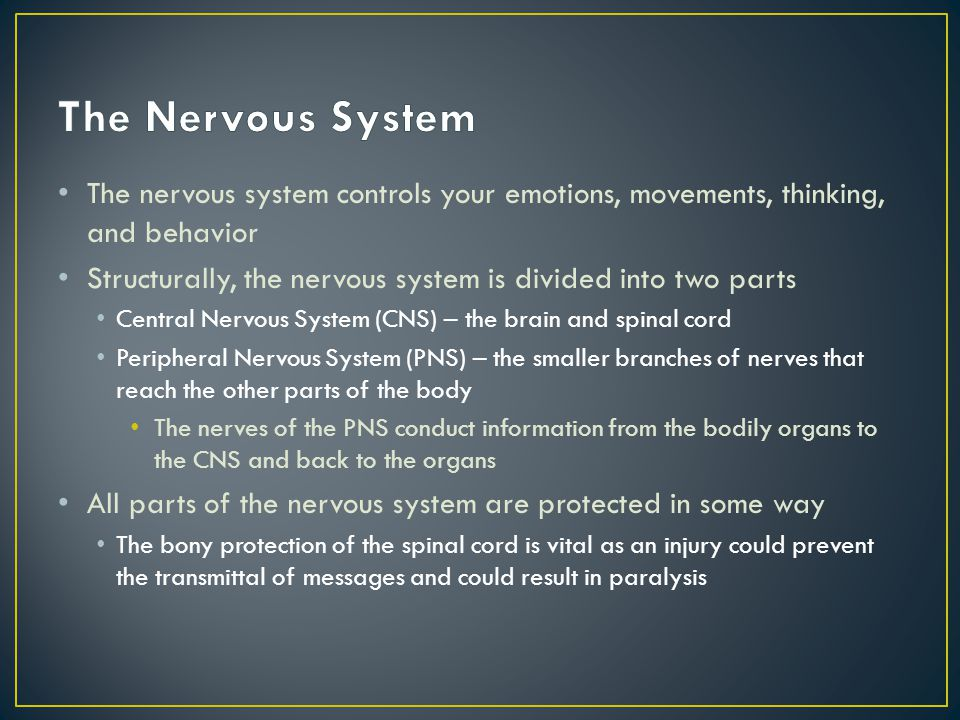 The Nervous System The nervous system controls your emotions, movements, thinking, and behavior.