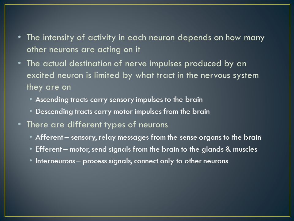 There are different types of neurons
