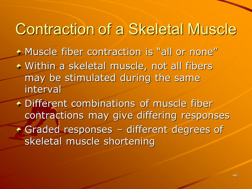 Contraction of a Skeletal Muscle