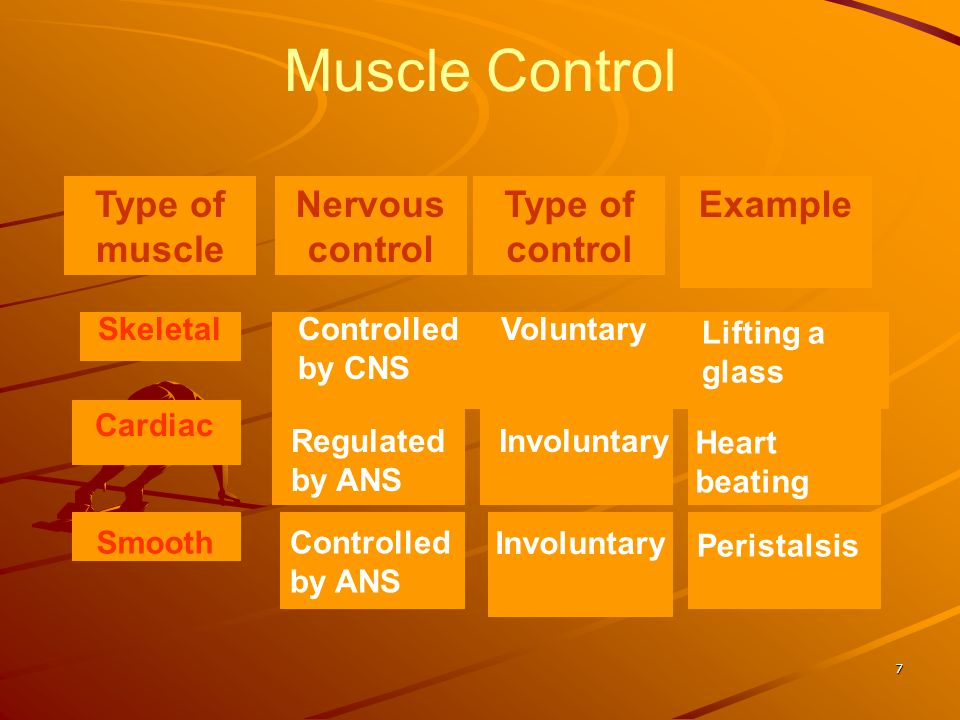 Muscle Control Type of muscle Nervous control Type of control Example