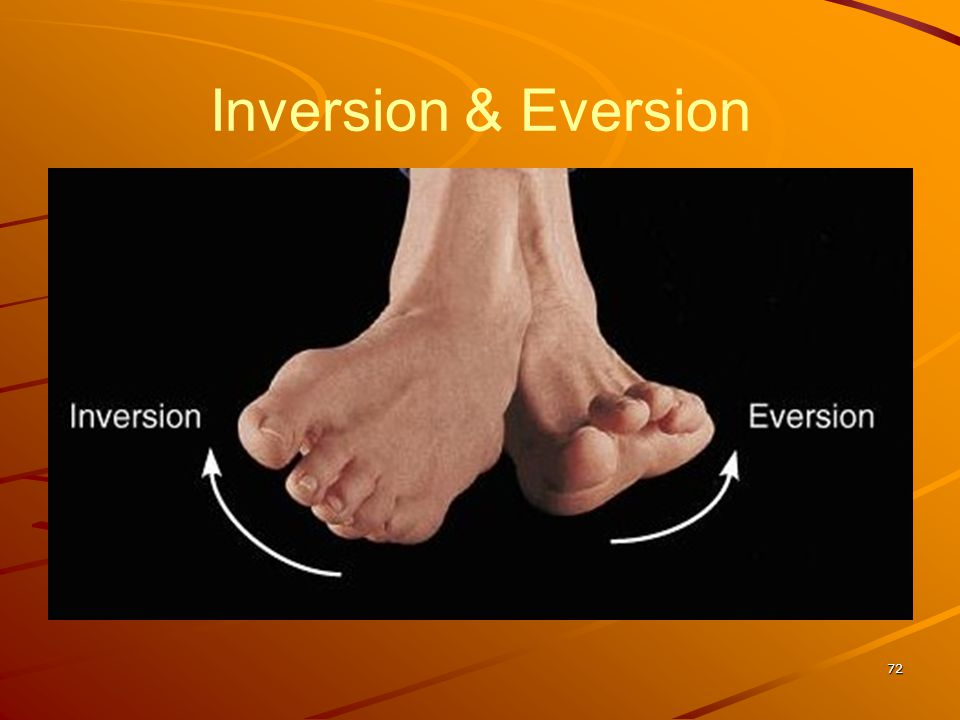 Inversion & Eversion