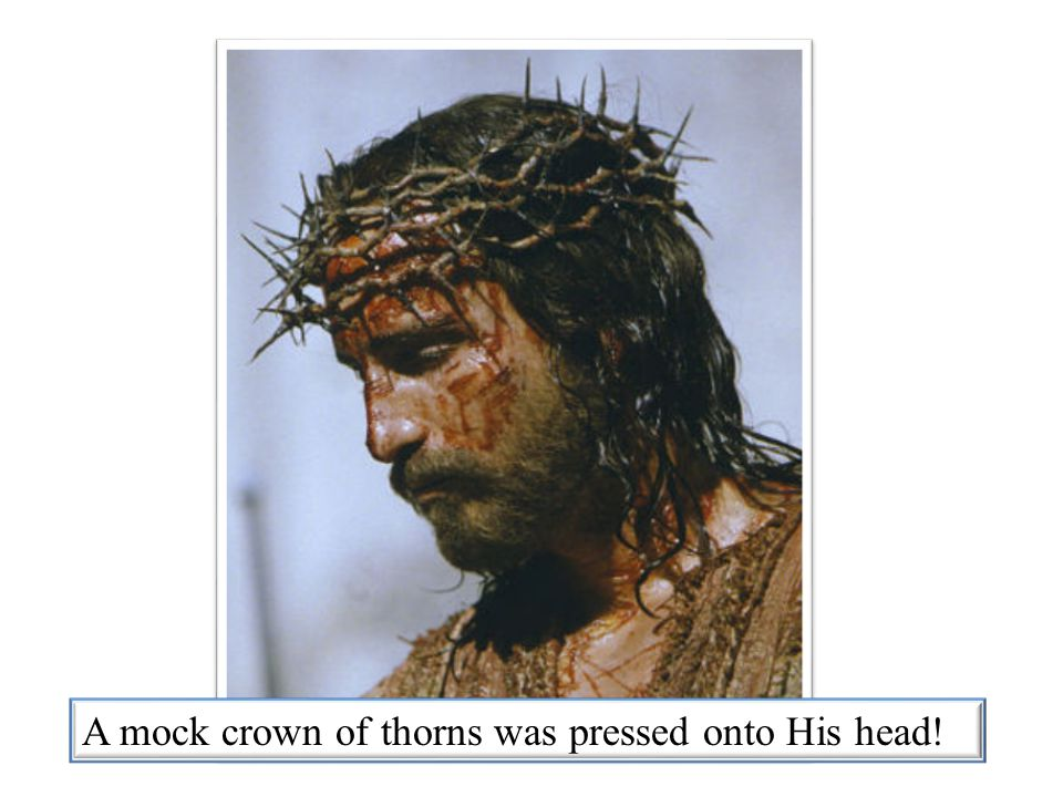 A mock crown of thorns was pressed onto His head!