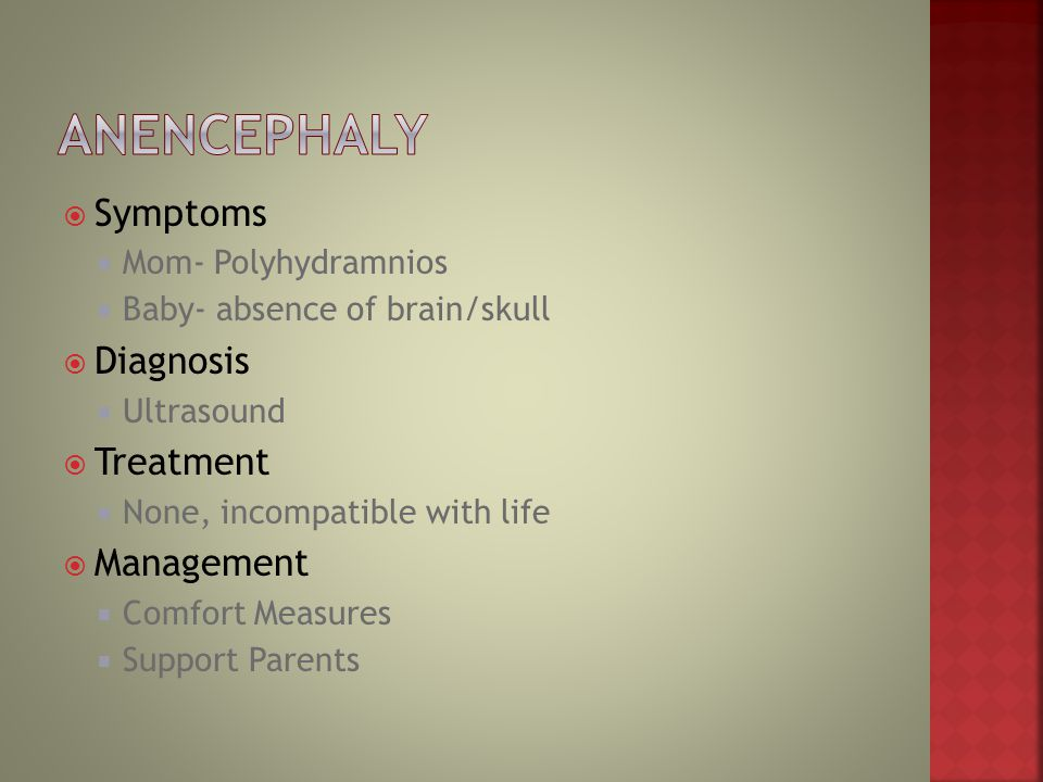Anencephaly Symptoms Diagnosis Treatment Management