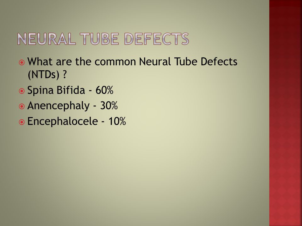 Neural Tube Defects What are the common Neural Tube Defects (NTDs)