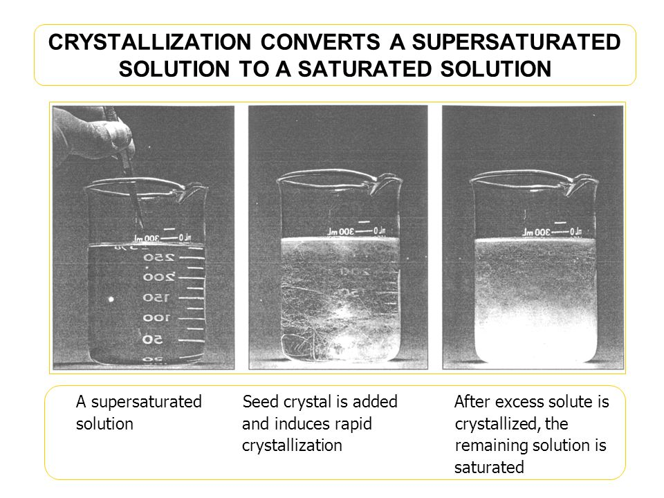CRYSTALLIZATION CONVERTS A SUPERSATURATED SOLUTION TO A SATURATED SOLUTION